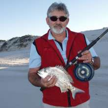 Beach bream on South Straddie
